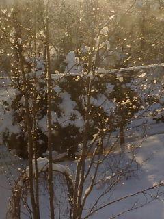 雪、そして風と地震