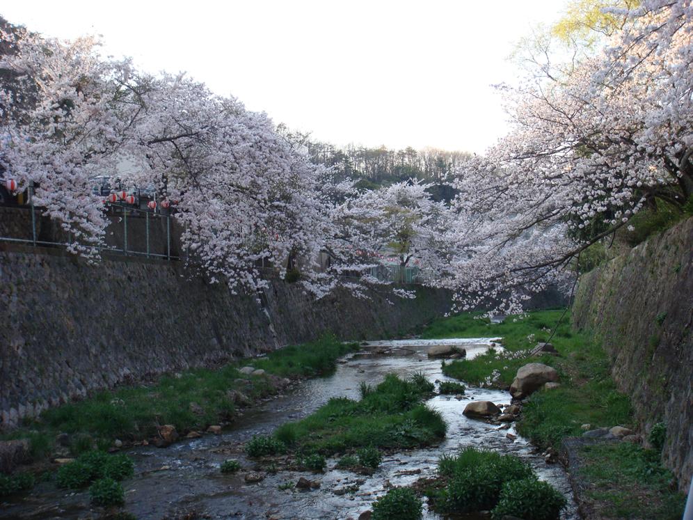 Kawasakura