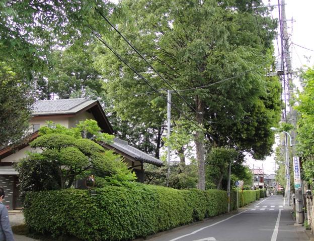 Ikegaki