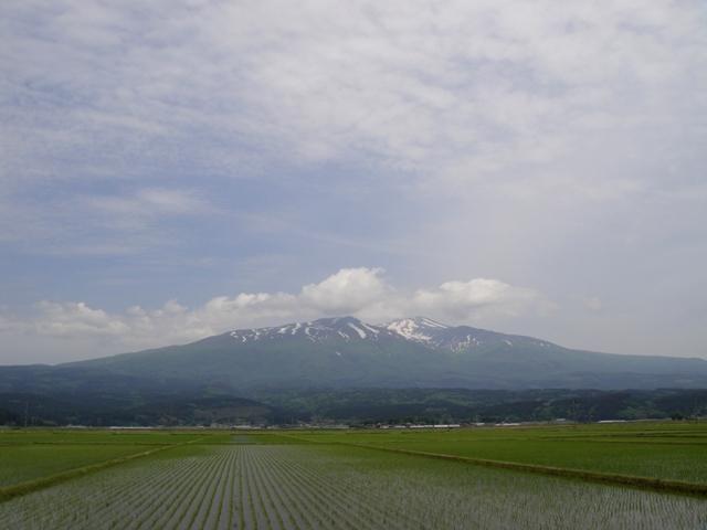 Yusacho